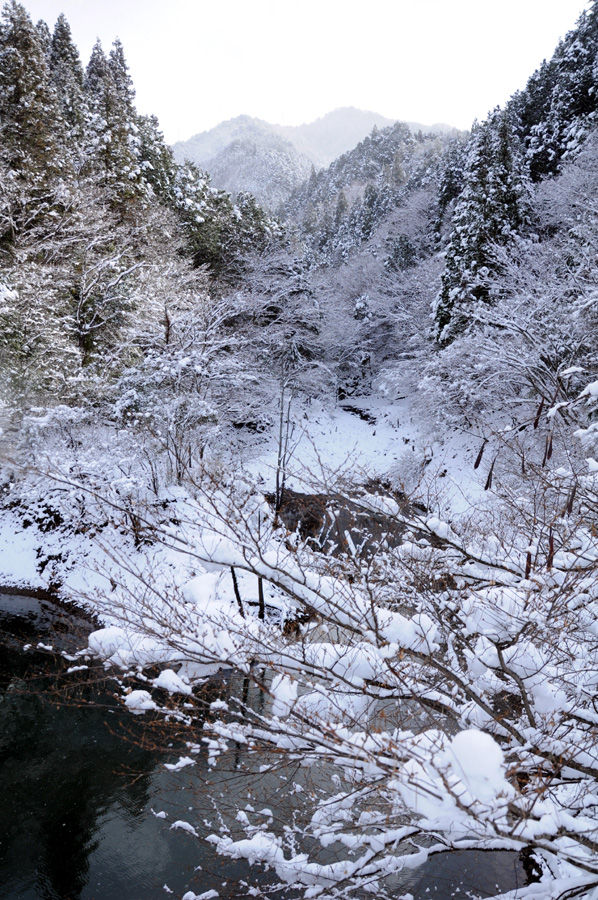snow03710445