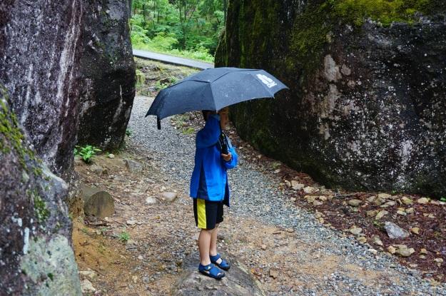 DSC03822 umbrella day