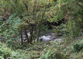 DSC04379 stream below
