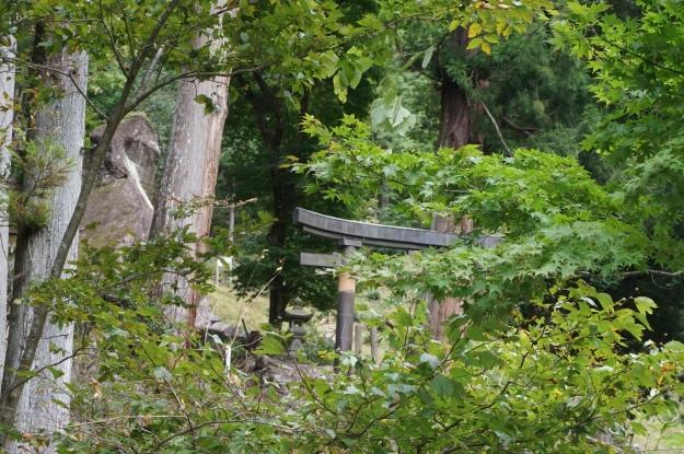 DSC04710 side view of torii