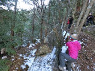 R stone climbing up